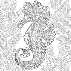 Zentangle stylized cartoon seahorse and tropical fish among seaweed. Hand drawn sketch for adult antistress coloring page, T-shirt emblem, logo or tattoo with doodle, zentangle, floral design elements