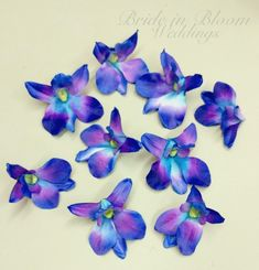 Blue orchid flowers, Blue orchids wedding decorations, DIY Wedding supplies, Silk orchids, Blue turquoise orchid blooms by BrideinBloomWeddings on Etsy Blue Orchid Wedding, Blue Orchid Flower, Turquoise Flowers, Diy Wedding Flowers, Wedding Ideas, Trendy Wedding, Wedding Stuff, Wedding Planning, Wedding Things