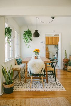 Take a Walk On the Wild Side With These 11 Bohemian Dining Rooms Böhmisches Esszimmer mit neutraler Farbpalette Tiny Dining Rooms, Dining Room Walls, Dining Room Lighting, Dining Room Design, Carpet Dining Room, Apartment Dining Rooms, Dining Room With Bench, Dinning Room Ideas, Dining Room Colour Schemes