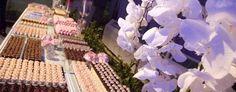 mesa de chocolates para casamento - Pesquisa Google