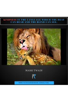 Kindness Is King  #funnyanimals #funny #lol #animals #LOLBook #cuteanimals #cats #hilarious #lions #deer #motivationalquotes #motivation #quotes #inspirationalquotes #inspiration #quoteoftheday #quote #motivational #success #successtips #Top10