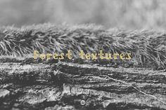 Forest textures Graphics The image pack I decided to add, contains 11 images that I shot a few days ago. Get ready for some by DIGITAL INFUSION Texture Design, Texture Art, Business Brochure, Business Card Logo, Desktop Images, Add Image, Website Header, Script Type, Creative Sketches