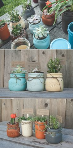 Mason Jar Planters or Herb Garden Painted mason jars with succulents. Cute little mason jar plants. Make a succulent garden with jars or give as gifts. Painting tips linked.Painted mason jars with succulents. Cute little mason jar plants. Mason Jar Plants, Mason Jar Succulents, Plants In Jars, Small Succulents, Mason Jar Diy, Succulents Garden, Indoor Succulents, Colorful Succulents, Plants Indoor