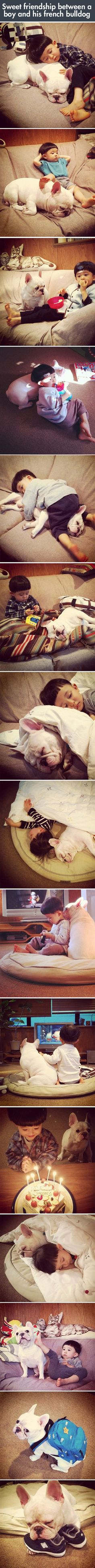 Boy and Bulldog   - funny pictures #funnypictures