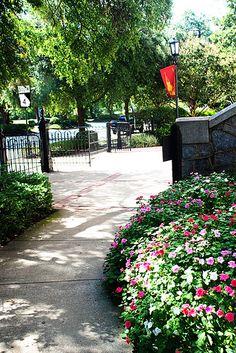 So pretty, Augusta, Georgia