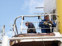 Schiffe in Arbeit: M.S. BLEICHEN - Stiftung Hamburg Maritim