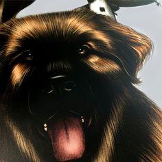 Wild At Heart 'Cutsie Canines' Wallpaper Sample