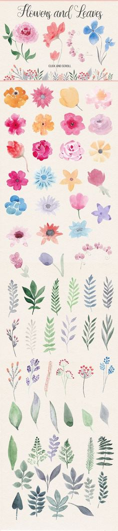 This pack contains more than 40 watercolor flowers, about 40 floral elements (le. This pack contains more than 40 watercolor flowers, about 40 floral elements (leaves, branches), 5 Illustration Blume, Watercolor Illustration, Motif Floral, Floral Flowers, Pretty Flowers, Watercolor Design, Watercolor Ideas, Watercolor Pencils, Simple Watercolor Flowers