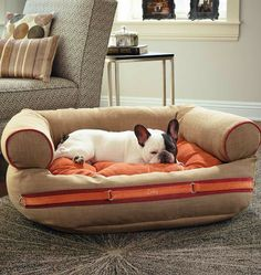 Takes stylish pet beds to a whole new level.