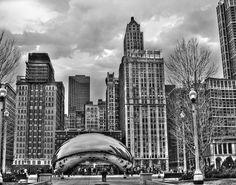Chicago Skyline in Black and White Fine