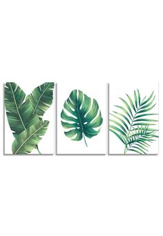 Abstract Watercolor Art, Watercolor Plants, Watercolor Paintings, Acrylic Portrait Painting, Black Art Painting, Diy Wall Art, Wall Art Sets, Green Wall Decor, Plant Painting