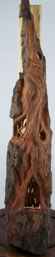Mystical Fairy House hand carved Cottonwood Bark door NathanMGardner, $144,00