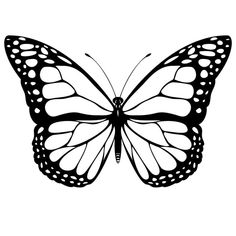 Print Monarch Butterfly Coloring Page coloring page & book. Your own Monarch Butterfly Coloring Page printable coloring page. With over 4000 coloring pages including Monarch Butterfly Coloring Page . Butterfly Outline, Butterfly Clip Art, Butterfly Pictures, Butterfly Template, Butterfly Tattoo Designs, White Butterfly, Butterfly Wings, Printable Butterfly, Butterfly Stencil