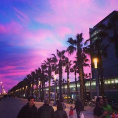 Barceloneta.....en Barcelona...España