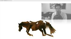 ALPHA LOOKING at old neen (Van Den Dorpel's horse)