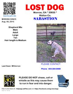 Lost Dog - Mix - Monroe, GA, United States