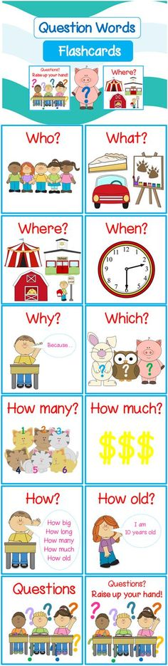 *FREE* Question Word Flashcards with Picture (When, What Where, When, Why, Which, How, How Many, How Much, How old, How often)