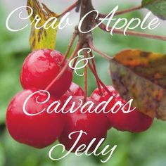 Crab apple and Calvados Jelly Recipe – The Proper Marmalade Company