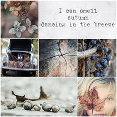 ♕ I can smell autumn dancing in the breeze Autumn Inspiration, Color Inspiration, Collages, Beautiful Collage, Beautiful Life, Hello Autumn, Fall Halloween, Mood Boards, Autumn Leaves