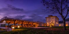 Azienda produttrice di vini da vitigni autoctoni di Nero Buono e Bellone ...