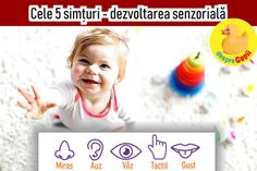 Dezvoltarea senzorială a bebelusului stă la baza dezvoltarii sale cognitive.   Dezvoltarea senzorială este modul in care bebelusul invată sa cunoască lumea care il inconjoară prin intermediul simturilor sale: văzul, mirosul, pipăitul, auzul, gustul ... Modul