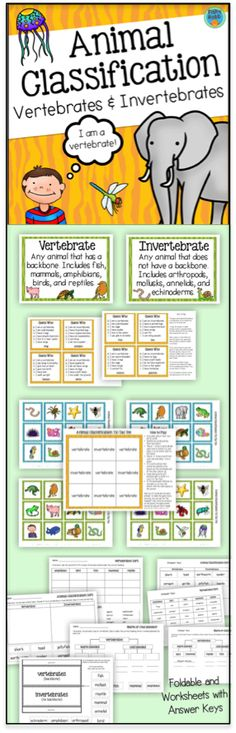 Animal Classification pack - includes posters, game, centers, and printables.