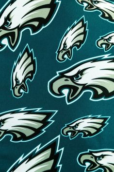 Philadelphia Eagles Fans, Philadelphia Sports, Football Team, Football Stuff, Fly Eagles Fly