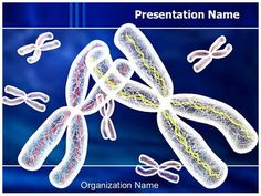 Chromosomes Structure Powerpoint Template is one of the best PowerPoint templates by EditableTemplates.com. #EditableTemplates #PowerPoint #Atom #Reproduction #Inheritance #Biochemistry #Chromatid #Chromosome #Illustration #Replication #Stem #Genetic #Structure #X #Code #Centromere #Scientific #Medical #Science #Chain #Spiral #Molecular #Heredity #Engineering #Pattern #Protein #Molecule #Chemical #Health #Information #Gene #Strand #Helix