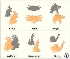 Pamiętasz jak w dzieciństwie robiłeś królika? Zobacz jakie inne zwierzątka można zrobić na ścianie przy pomocy światła i dłoni :)