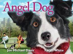 Angel Dog - Full Movie
