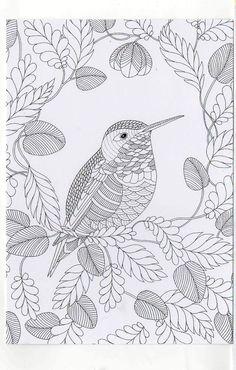 Millie Marotta's Colouring in Card - House Sparrow