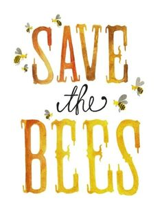 save the bees ♥