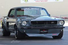 old classic ford cars Saleen Mustang, 1966 Ford Mustang, Ford Mustang Fastback, Mustang Cars, Car Ford, Ford Mustangs, Classic Mustang, Ford Classic Cars, American Classic Cars
