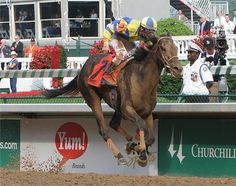 2007 - Street Sense - 133rd Race Horses, Horse Racing, Dream Stables, Derby Winners, Sport Of Kings, Thoroughbred Horse, Kentucky Derby, Legends, Street