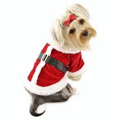 Luxurious Santa's Coat with Furry Trims - Holiday - Christmas Posh Puppy Boutique Elsa And Anna Dolls, Pet Coats, Christmas Holidays, Dog Holidays, Designer Dog Clothes, Santa Baby, Dog Design, Pet Shop, Pet Supplies