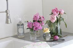 Deko * Küche * Kitchen * Flower * Pfingstrosen