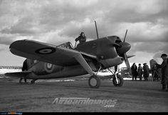 Brewster F2A Buffalo - Large Preview - AirTeamImages.com