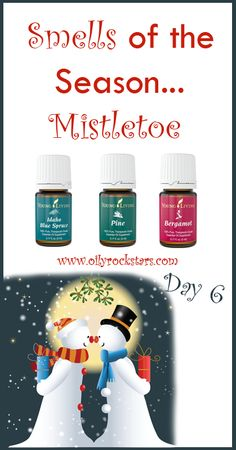 """Do you have a mistletoe hanging in your house for the holidays? And did you know it's said to be bad luck to refuse a kiss when caught standing under one? Ha! I have always wondered how the """"kissing under the mistletoe"""" started... #mistletoe #essentialoils #christmas #nontoxic"""