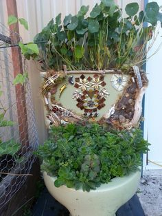 My decorated toilet tank planter.