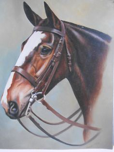 Stunning oil painting study of horse by Heidi 95