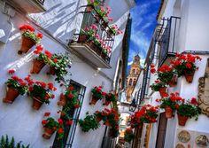 Calleja de las Flores e vista para Mesquita de Córdoba - Córdoba - Espanha