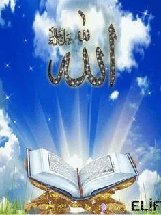 Animasi Foto Islamic Images, Islamic Videos, Islamic Pictures, Rose Flower Wallpaper, Flowery Wallpaper, Cute Love Pictures, Beautiful Nature Pictures, Quran Wallpaper, Islamic Wallpaper