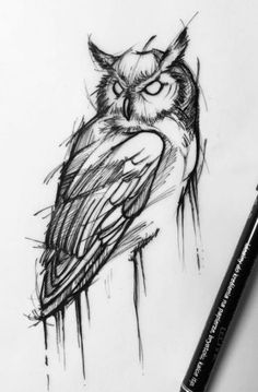 19 Trendy Ideas For Tattoo Ideas Geometric Owl – Tattoo Sketches & Tattoo Drawings Sketch Style Tattoos, Tattoo Sketches, Drawing Sketches, Owl Tattoo Drawings, Drawing Ideas, Drawing Art, Dragon Tattoo Sketch, Dream Drawing, Drawing Tips