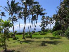 TEL(808) 852-8833 DaveDickey.net (RS) Century 21 All Islands #Waikiki #Hawaii #Kakaako #Paris #London #Sydney #Tokyo www.HawaiiInvestorsClub.com