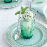 Coconut milk Mint Chip Ice Cream