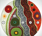 Recipes for custom color blending using Uroboros frit… Fused Glass Art, Stained Glass, Color Blending, My Glass, Mosaic, Projects To Try, Sculptures, Kids Rugs, Diy Crafts