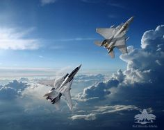 Image result for f14 tomcat wall art