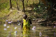 Way of the water lilies: Where science meets the billabong in Australia's Northern Territory.  Wonderful tribal history.