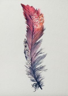 Feather watercolour painting in red