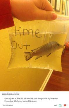 Naughty fish!